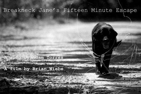 Breakneck Jane's Fifteen Minute Escape Poster